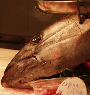 Tuna at a market, Barcelona (Image: BBC)