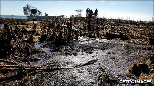 Oil is seen deposited along dead marsh land near Bay Jimmy on January 7, 2011 in Port Sulphur, Louisiana.