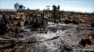 Oil is seen deposited along dead marsh land near Bay Jimmy on January 7, 2011 in Port Sulphur, Louisiana.