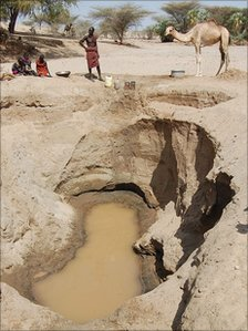 A waterhole dug in the Lake Turkana region