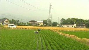 farmers in Hokkaido, Japan