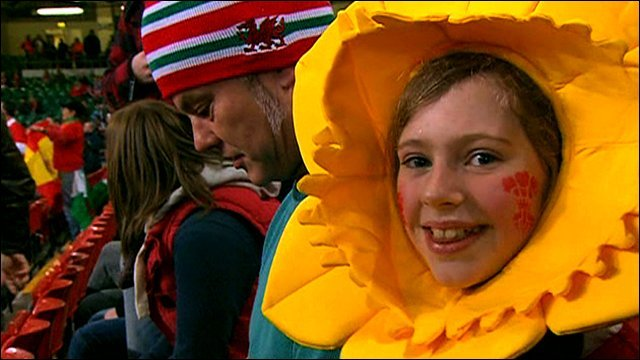 A Wales supporter dressed as a daffodil