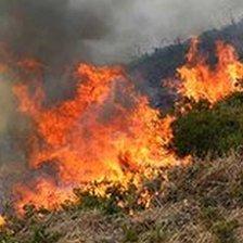 Fire on Upton Heath, Poole