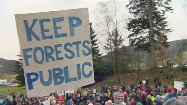 Forest protest, UK
