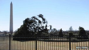 The US &quot;National Christmas Tree&quot; lies toppled, 19 February