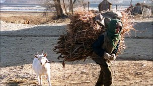 File image of worker carrying hay in Taziri, North Korea, in December 1995