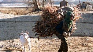 File image of worker carrying hay in Taziri, North Korea, in December 1995
