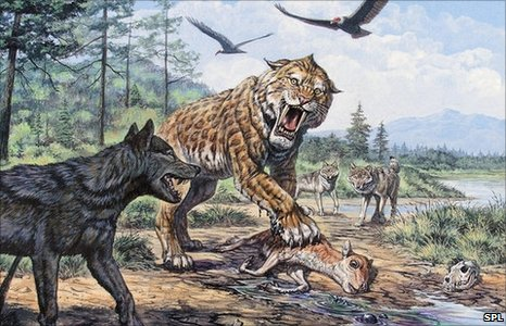 Artist's impression of smilodon hunting (Image: Science Photo Library)