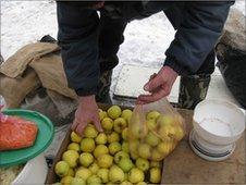 An apple stall at Kiev market