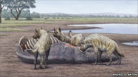Giant hyenas scavenging (artist's impression)