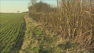 Bingham land earmarked for development