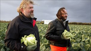Hairy Bikers in cauliflower field