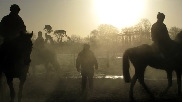 Trainer Tom Hogan with his horses