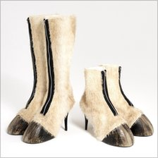 Hoof shoes