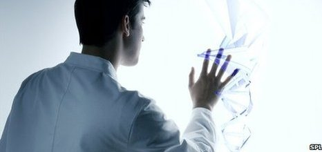 Researcher examining a three-dimensional model of a DNA