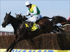 Tony McCoy on Albertas Run
