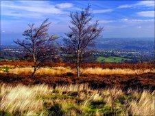Blacka Moor