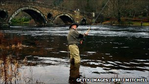 Man fishes for Salmon in the River Tay