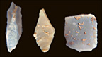 Stone tools (M.Waters)