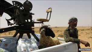 Rebel with gun and sheep in a pickup