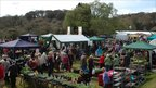 Cornwall Spring Flower Show