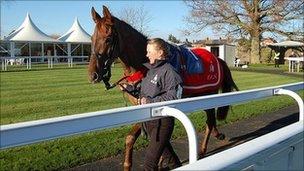 Horse at Newbury Racecourse