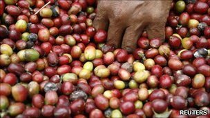 Coffee beans, Reuters