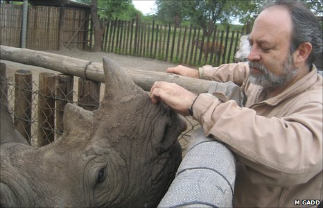 Raoul du Toit with a rhino, which was rescued after having its leg caught in a snare laid by poachers (Image: Michelle Gadd) 