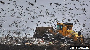 Gulls fly around as a bulldozer compacts freshly dumped rubbish at a landfill site in Gloucester