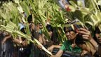 A Filipino devotee waits for blessing of palm fronds during Palm Sunday rites outside a church in suburban Manila, 17 April 2011