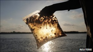 A man holds a plastic bag, with oil from the Deepwater Horizon gulf oil spill