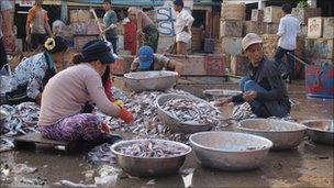 Fish market in Phnom Penh