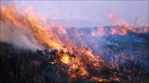 Previous fire on North York Moors