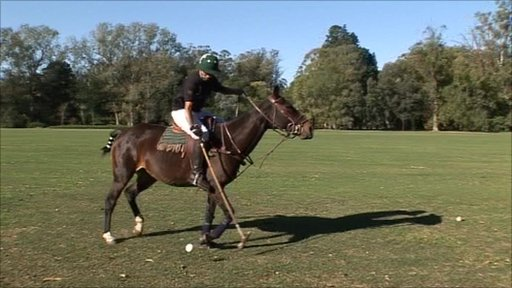 Palo Alto Polo Club – Play polo in Argentina