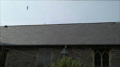 The church roof from where lead has been stripped