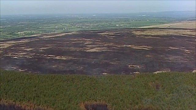Fire-hit moorland