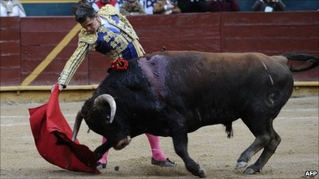 Ecuadorean matador Guillermo Alban participates in a bull-fight at the Raul Davila bullring on 23 April in Riobamba, Ecuador, on the last run of bullfighting