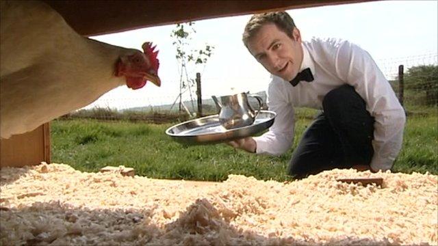 Chicken being served in hotel
