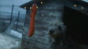 Dog in kennel - John Lewis advert