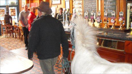 Pony in pub