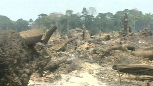 the destruction of the rainforest in brazil It's a black period for brazil's environment, and things will get even worse in days  to follow the government just applied a reform of the forestry.