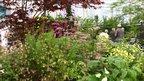 Harveys Garden Plants at RHS Chelsea Flower Show 2011