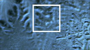 satellite image of pyramid