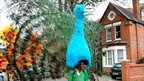 A carnival-goer wears a peacock on his head at the Reading Community Carnival 2011