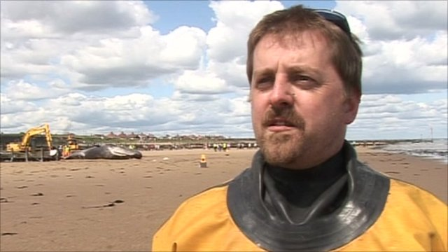 Richard Ilderton, British Divers Marine Life Rescue