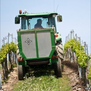 Tractor driving through a vineyard (Image: European Environment Agency)