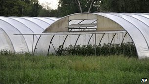 Farm in Uelzen, northern Germany identified by officials as source for E. coli outbreak (5 June 2011)