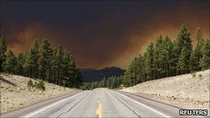 A view of the Wallow Wildfire along US Route 180 as smoke fills the sky in Luna, New Mexico  on Monday
