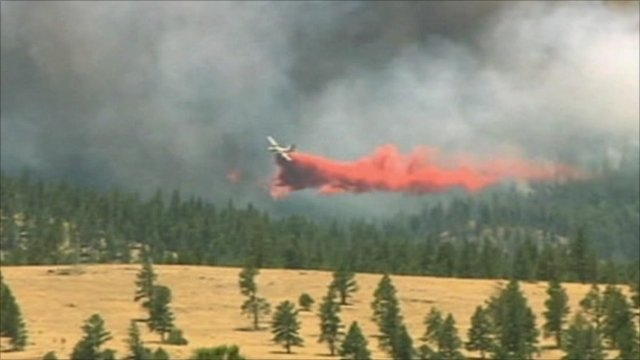 Airplane attempts to battle wildfire