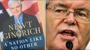 Newt Gingrich's book